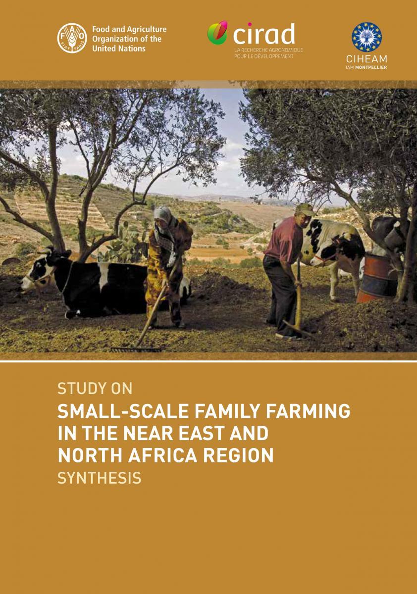 الزراعة الأسرية الصغيرة النطاق في منطقة الشرق الأدنى وشمال أفريقيا