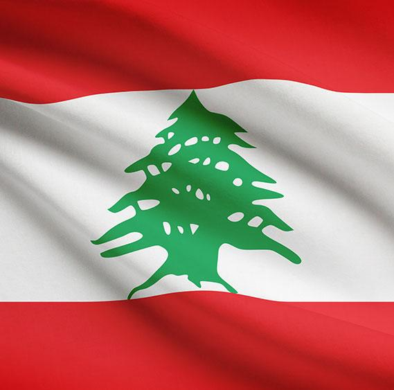 NGOs and CBOs in Lebanon