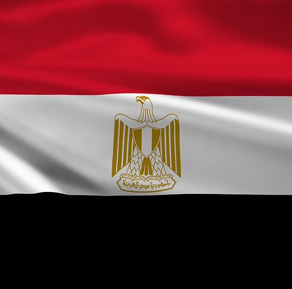 NGOs and CBOs in EGYPT