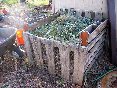 Composting Unit at Home